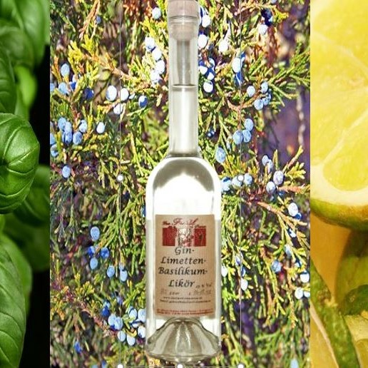 Gin-Limetten-Basilikum-Likör 25% Vol.